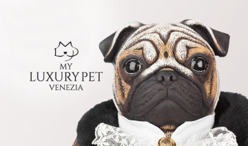 Shop My Luxury Pet