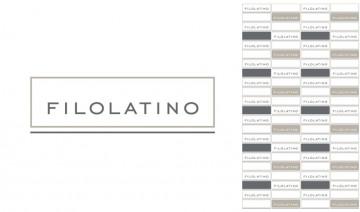 Sviluppo brand identity